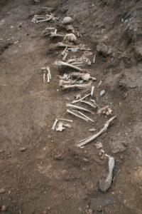 2009년 전남 함평 해보면 유해발굴(1)|노용석 제공
