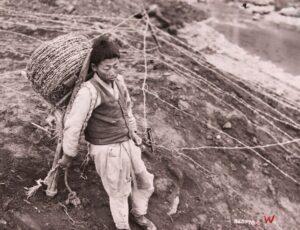 철조망 설치 중 지게에 기대 휴식을 취하는 소년 노무자|1951.4.28. NARA 소장