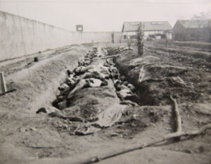 대전형무소에서 북한군에 의해 총살당한 남한 경찰의 시신|1950.10. NARA 소장